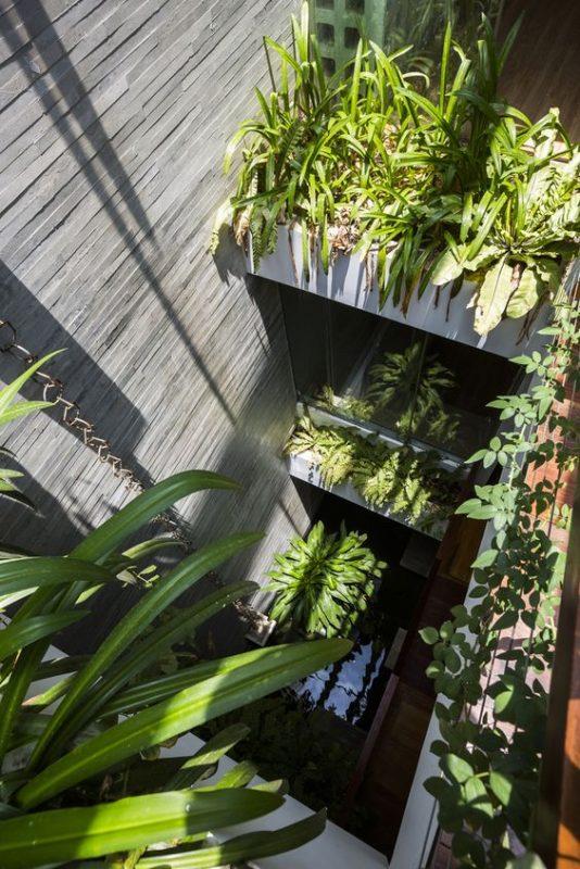 mẫu giếng trời trong nhà ống với vườn cây xanh tốt