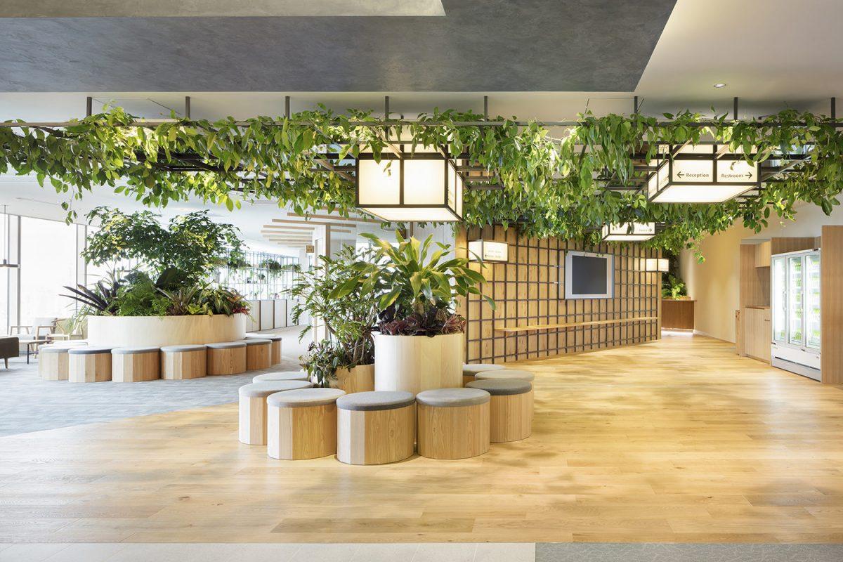 Thiết kế không gian sinh hoạt chung cho văn phòng